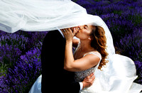 Artistic Bride kiss groom with flowing vail
